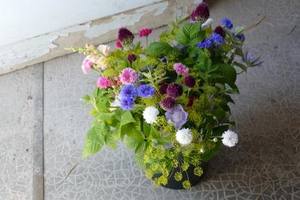 P1060903 - Seau rose-violet