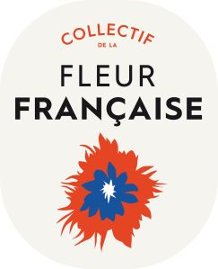 Logo CFF